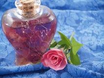 ustawiona różowa romantyczna róż sceny miękka część Zdjęcia Royalty Free