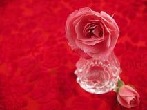 ustawiona różowa romantyczna róż sceny miękka część Zdjęcie Royalty Free