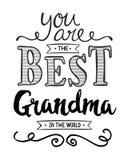 Usted es la mejor abuela del mundo ilustración del vector