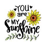 Usted es mis letras de la mano de la sol stock de ilustración