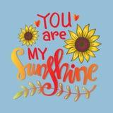 Usted es mis letras de la mano de la sol libre illustration