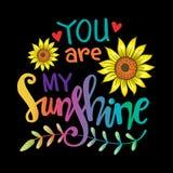 Usted es mis letras de la mano de la sol ilustración del vector