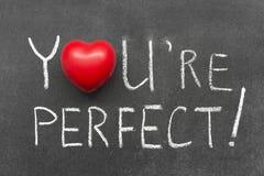 Usted es perfecto Foto de archivo libre de regalías