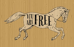 Usted está libre Imagen de archivo libre de regalías