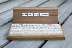 Usted no es estúpido Imágenes de archivo libres de regalías