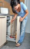Ustensile de cuisine Image libre de droits