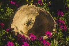 Ustensile Handcrafted de liège dans le jardin photographie stock