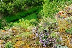 Ustinovskii Canyon, Southern Urals Royalty Free Stock Photos