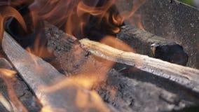 Ustione di legno in addetto alla brasatura stock footage