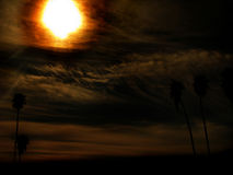 Ustione di Sun di paradiso Fotografia Stock