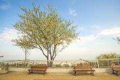 Ustka, Poland with beach promenade Stock Photography