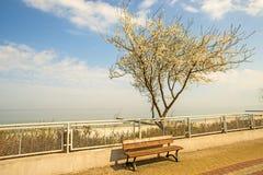 Ustka, Polonia con la passeggiata della spiaggia Immagine Stock