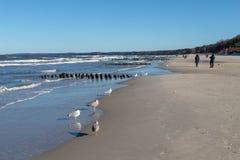 Ustka Pomorskie/Polen - Februari, 22, 2019: Folk som promenerar stranden på kusten En vinter går i soligt väder arkivbilder