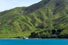 Ustronny dom, Nowa Zelandia Zdjęcia Royalty Free