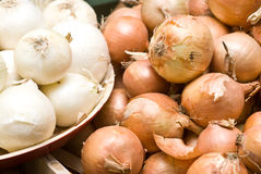 Usual onion and white onion. Lot of onion from a local shop Royalty Free Stock Images