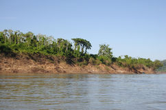 Usumacinta river Royalty Free Stock Photo