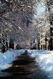 Usuwający śnieg od alei po ciężkiego śniegu w parku Zdjęcia Royalty Free