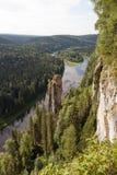 Usvinskie Polen in het Permanentgebied Stock Fotografie