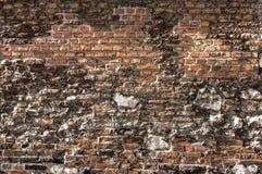 Uszkadzająca ściana z cegieł tekstura Fotografia Royalty Free