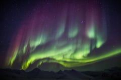 Utöver det vanliga Aurora Borealis på den arktiska himlen - Spitsbergen, Svalbard Royaltyfri Fotografi