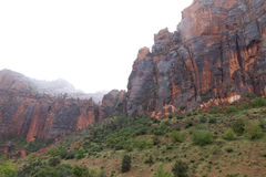 UT-Zion National Park-Zion Canyon Stock Photography