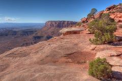 UT-Canyonlands天空区Grandview足迹的全国珀丽湾 免版税库存图片