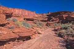 UT-Canyonlands Nati Pk空白外缘路墨菲循环。 库存照片