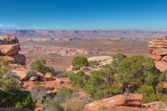 UT-Canyonlands National Park-Island in the Sky District-Grandview Trail royalty free stock photos