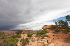 UT-Canyonlands National Park-Maze District Royalty Free Stock Photo