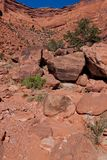 UT-Canyonlands National Park-White Rim Rd. This image was taken on the Murphy Loop Trail off the White RimRoad in the Canyonlands National Park Stock Image
