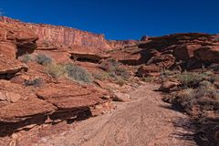 UT-Canyonlands National Park-White Rim Road. This image was taken on the Murphy Loop Trail off the White RimRoad in the Canyonlands National Park Royalty Free Stock Image