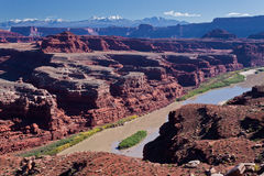 UT-Canyonlands National Pk-White Rim Rd-Gooseneck Stock Image