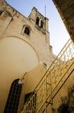 Ut sidosikt på synagogakyrkan Royaltyfria Bilder