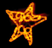 Ut ur den felika ljusa julstjärnan för fokus Fotografering för Bildbyråer