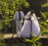 Ut ur fokus går bruden och brudgummen till och med bron Arkivbild