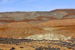 Utah ökenfärger arkivbilder