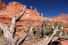 Utah - Arches National Park Stock Images