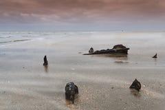Utah Beach Royalty Free Stock Images