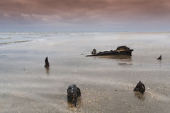 Utah Beach. Ruins of an armored vehicle at Utah Beach, Normandy, France Royalty Free Stock Images