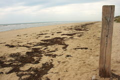 Utah Beach, Normandy Royalty Free Stock Photos