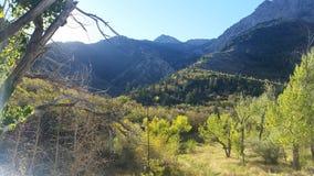 Utah berg på våren Royaltyfria Bilder