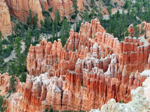 Utah - Bryce Canyon Stock Image