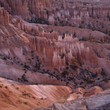 Utah - Bryce Canyon National Park Royalty Free Stock Photo
