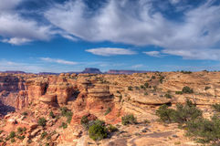 Utah-Canyonlands National Park-Needles District Stock Image