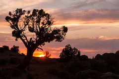 Utah Desert Sunset Royalty Free Stock Image