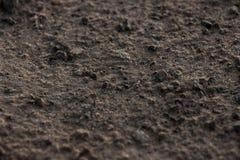 Utah Dirt Up Close Royalty Free Stock Image