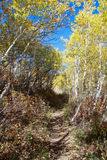 Utah: Fall Hiking Stock Photography