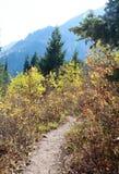 Utah: Fall Hiking Stock Images