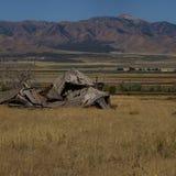 Utah farma Zdjęcie Stock