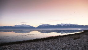 Utah Lake and Birds Dolly Morning. Beautiful wintertime shot of Utah Lake in the morning stock video